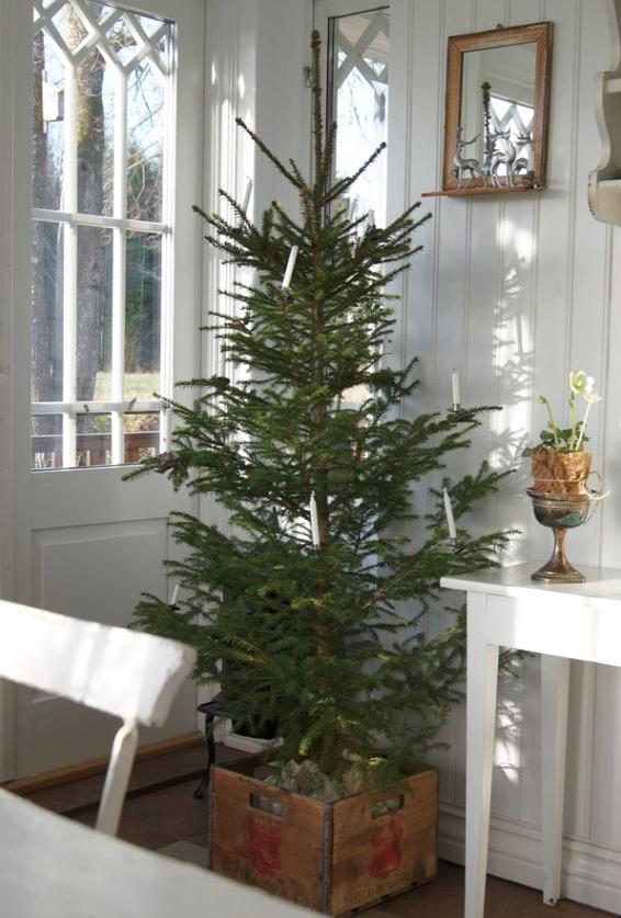 北欧クリスマスツリーおしゃれ